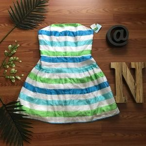 NWT Lilly Pulitzer Striped Jordan Dress